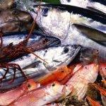Enograstronomia Eoliana –  Le isole del gusto